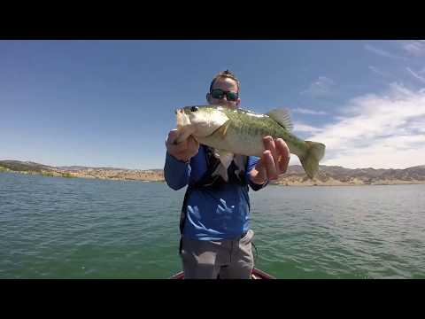 Catching 20+ Bass At Lake Berryessa!!