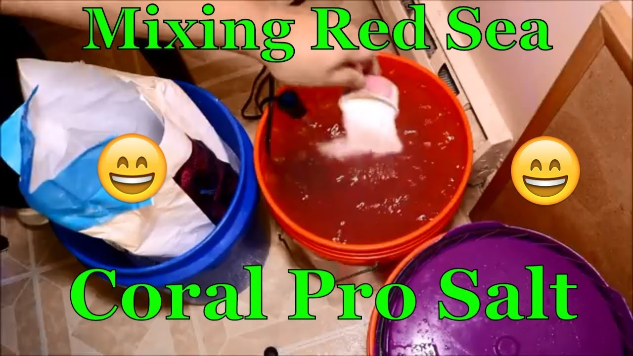mixing red sea coral pro youtube