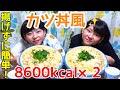 【大食い】揚げずに簡単!カツ丼風約12kg!【双子】