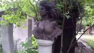 видео Евгений Абезгауз