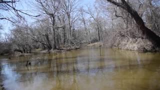Video pat mayse lake fishing for Lake degray fishing report
