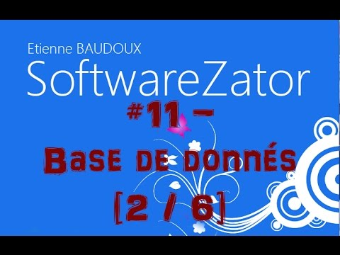 Base de données Access [2/6] - [Créer un logiciel sans coder] #11