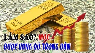 Huy động vàng, ngoại tệ - Làm sao MÓC được 500 tấn vàng và 60 tỉ $ trong dân?