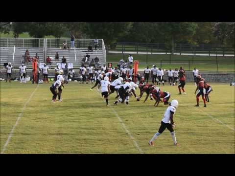 Georgia Falcons Semi Pro (Game Two July 22, 2017)