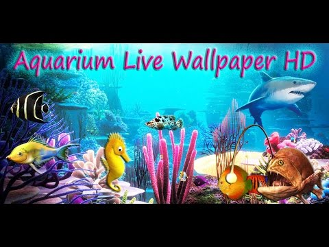 aquarium live wallpaper hd for android youtube