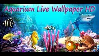 aquarium live wallpaper hd for android