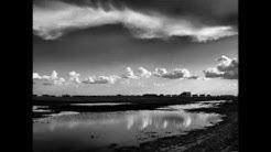ANSEL ADAMS: LANDSCAPE PHOTOGRAPHY