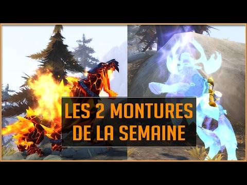 World of Warcraft - Esprit d&39;Eche&39;ro et Sabre de Feu Primordial