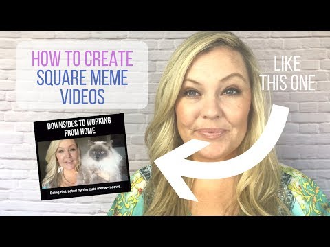How To Create Square Meme Video | Tracey Rose