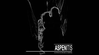 Aspen It Is - Breaking it Down for You YouTube Videos