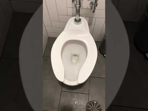 Woody and Wilcox - This Could Be The Most Over The Top Toilet Flush Of All Time
