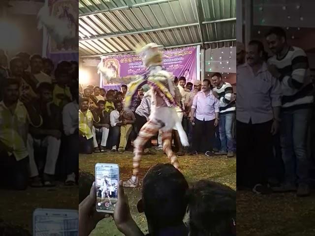 Sri sri sri karakachettu polamamba ammavari jatara ( pedawaltair ) vizag