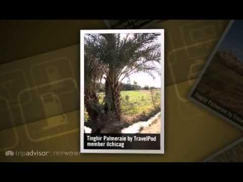 """Todra Gorge, Tinghir Palmeraie, and Berber Carpets"" Ilchicag's photos around Tinghir, Morocco"