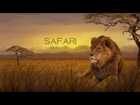Safari by Denes Agay || Pianist Misa