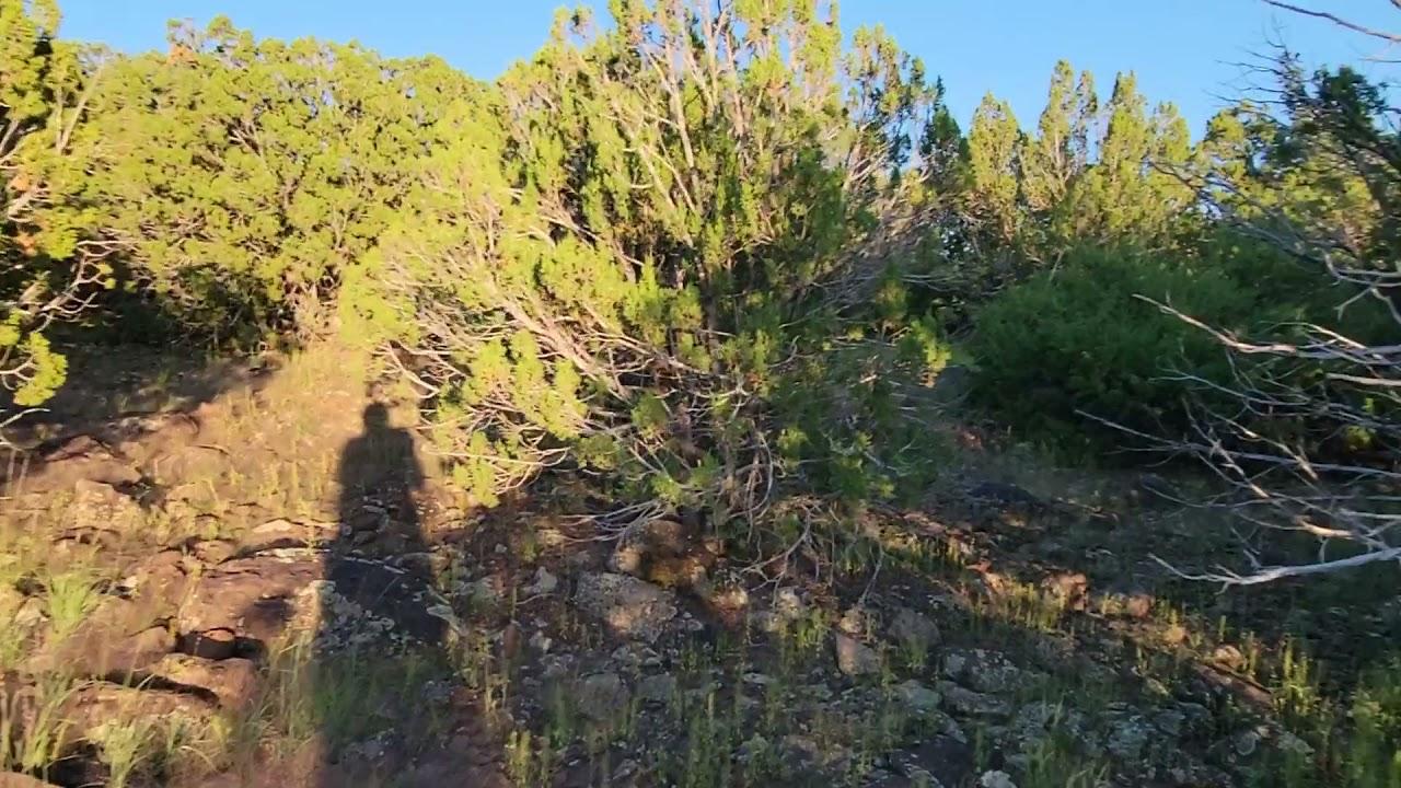1.14 Acres - RV Ok! In Show Low, Apache County AZ.mp4