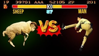 Sheep VS Man (Street Fighter Version Compilation)