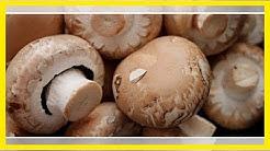 Champignons roh essen: Was du beachten solltest