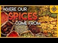 The Geography of Spices and Herbs