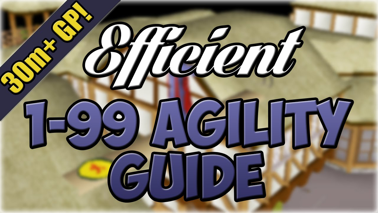 EFFICIENT 1 99 Agility Guide