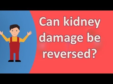 can-kidney-damage-be-reversed-?