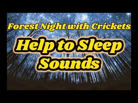 crickets chirping sound effect, white noise for sleeping