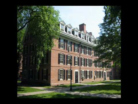 Yale fire levine America don't hire Yale grads