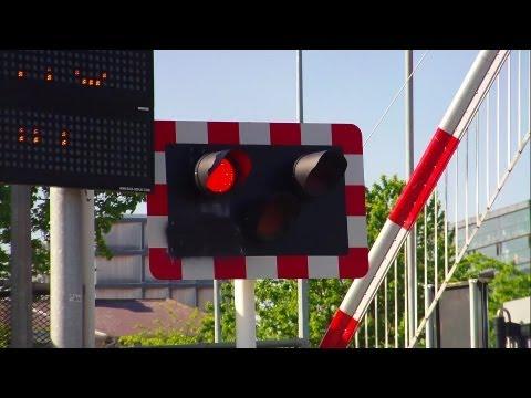 Merrion Gates Level Crossing - DART Train number 8638