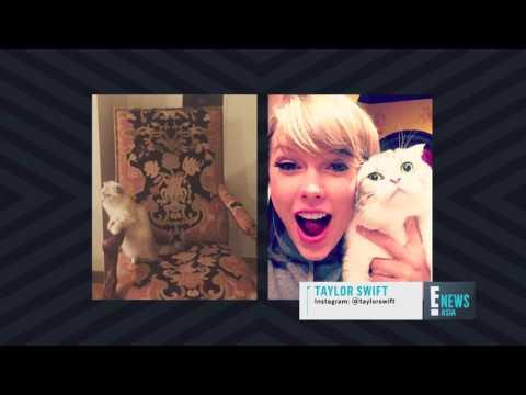 Top 5 Celebrity Pets | E! News Asia | E!