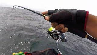 MICRO Jigging Cencaru TUAS PAYAQ ( Ultralight Fishing )