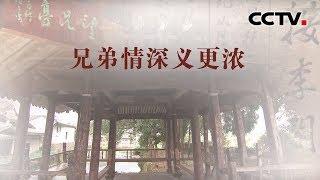 [中华优秀传统文化]兄弟情深义更浓| CCTV中文国际