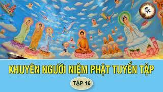 Nghe Truyện Này Mỗi Đêm Ngủ Rất Ngon Tâm An Lạc - Khuyên Người Niệm Phật Tuyển Tập p16