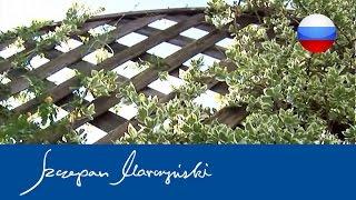 Вьющиеся растения — защитное озеленение оград(Вьющиеся растения быстро создают ограды, изолирующие нас от соседей, от неблагоприятного влияния дорог..., 2015-06-02T14:19:03.000Z)