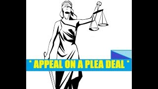 TAKE A PLEA Can You APPEAL? What About Chris Watts?