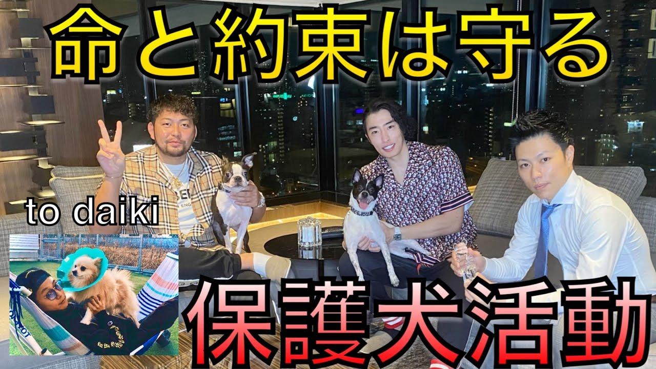 牛飼の保護犬保護猫活動to大輝