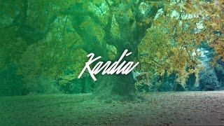 Смотреть клип Rec - Kardia