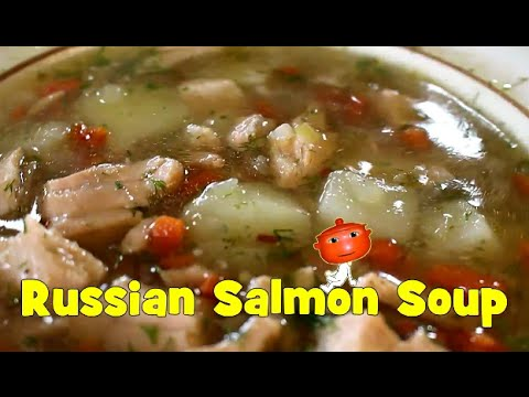 Russian Salmon Fish Soup Ukha. Stock recipe and Soup recipe. Garnish Option for Kids.