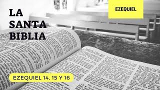 EZEQUIEL 14, 15, 16 (DÍA 213) LA SANTA BIBLIA || Biblia hablada ||