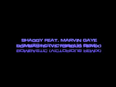Shaggy Feat Marvin Gaye  Bombastic Victorious Remix