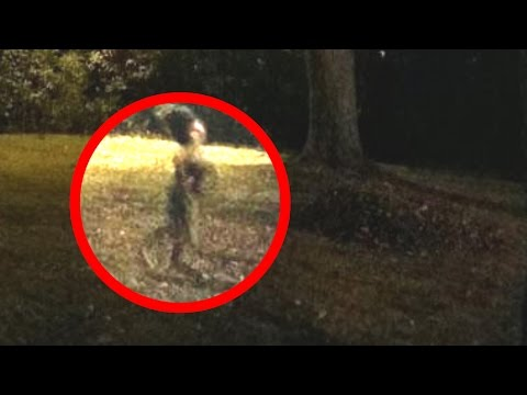 Unknown Creature Caught on Camera