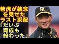 阪神タイガースの金本監督、執念の采配で最終戦勝利!金本チルドレンが躍動し、最後に花咲かせた!