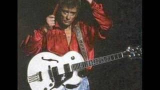 Johnny Hallyday : Ma gueule!