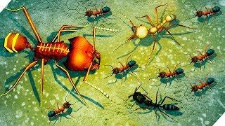 ЭВОЛЮЦИЯ МУРАВЕЙНИКА ! Готовимся к атаке муравьев - Игра Empires of the Undergrowth.
