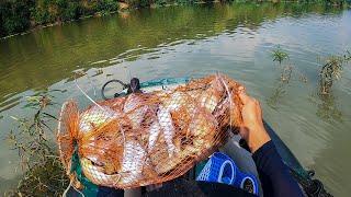 Câu Lancer cá mè dảnh sông Bé được bữa kéo cháy máy
