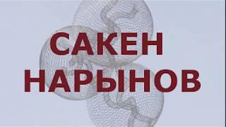САКЕН НАРЫНОВ //архитектор, опережающий время //выставка в МАрхИ