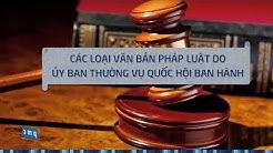 Hệ thống văn bản pháp luật Việt Nam