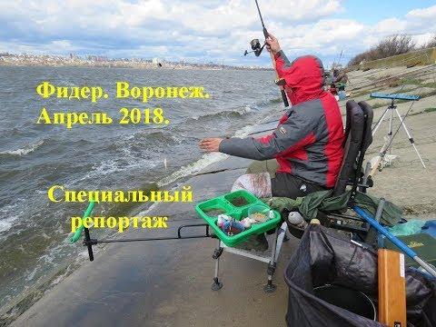 Турнир по ловле донной удочкой. Фидер апрель Воронеж 2018 - YouTube
