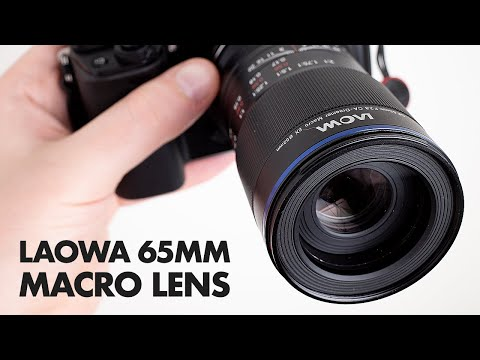 Laowa 65mm f/2.8 2x Macro Lens Review + Sample Photos