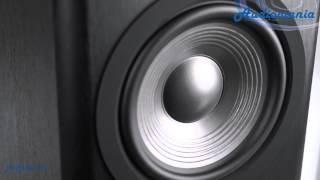 видео Legacy Audio Classic HD, купить напольную акустику Legacy Audio Classic HD