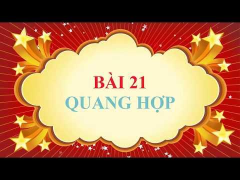 Sinh học lớp 6 - Bài 21 - Quang hợp