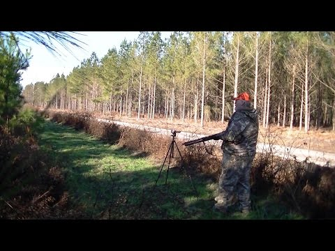 Buck taken on Camera with Stoeger M3000! Maysville Deer Drives 2014